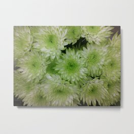 Green  burst Metal Print
