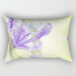 Flag iris in spring sunlight on a bright sunburst Rectangular Pillow