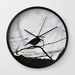 Kinglet in the Morning Wall Clock