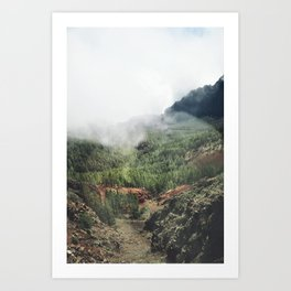 Mountain forest. Art Print