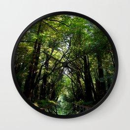 Redwood Reflection Wall Clock