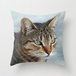 Stunning Tabby Cat Close Up Portrait Throw Pillow