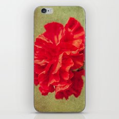 Red Carnation. iPhone & iPod Skin