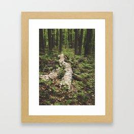 Mushroom Logged Framed Art Print