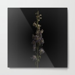 Flora #2 Metal Print