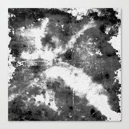 black anemone song Canvas Print