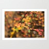 Fall Thorns Art Print
