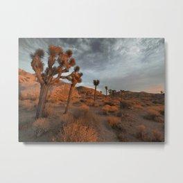 Desert Cacti 3 Metal Print