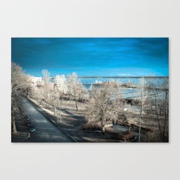 NORTHERN BREEZE Canvas Print