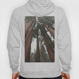 Sky Climbers - Sequoia Hoody