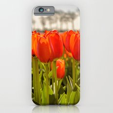 Tulips standing tall Slim Case iPhone 6s