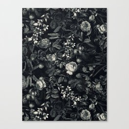 Black Forest III Canvas Print