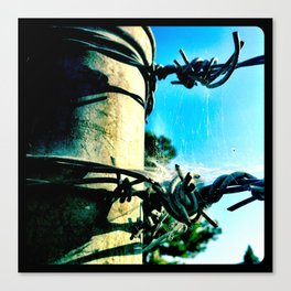 This is a fence. Canvas Print