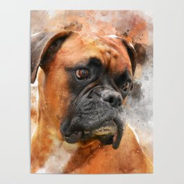 Boxer Dog Thinking Poster