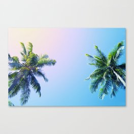 Coco Palm Trees on Pink Blue Sky Canvas Print