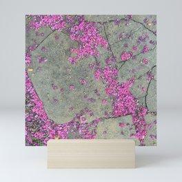 Along the Pink Crepe Sidewalk Mini Art Print