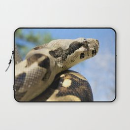Constrictor in tree Laptop Sleeve