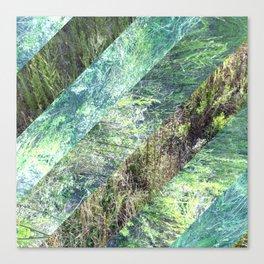 Super Natural No.3 Canvas Print