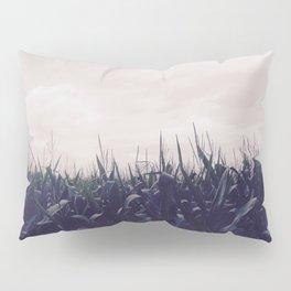 Corn Skies Pillow Sham