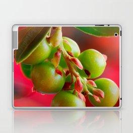 Green Berries Red Background #society6 #decor #buyart Laptop & iPad Skin
