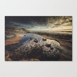 My watering hole Canvas Print