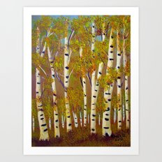 Birch trees-3 Art Print