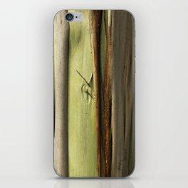 Eucalyptus tree iPhone Skin