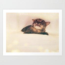 Kitty Dreams Art Print