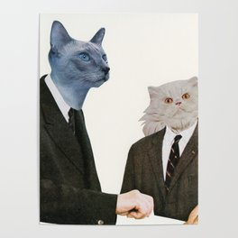 Cat Chat Poster