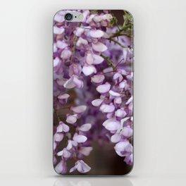 Spring - Wisteria iPhone Skin