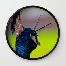 Pretty as a Peacock II Wall Clock