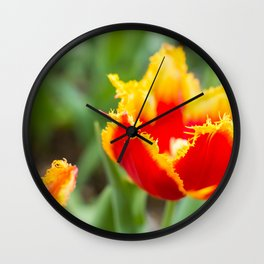 Fringed tulips Wall Clock