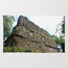Ruins of Yaxchilan Rug
