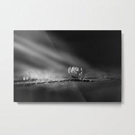 Mystical light Metal Print