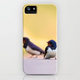 #Barn #swallows are the #lucky #charms of #nature iPhone Case