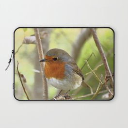 The Robin stance Laptop Sleeve