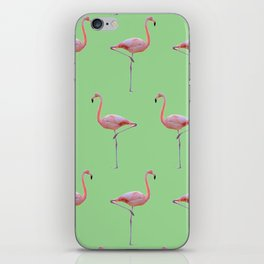 Flamingoing iPhone Skin