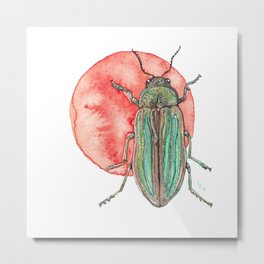Iridescent Beetle Metal Print
