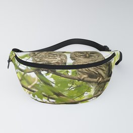 Barred owl mother and child Fanny Pack
