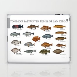 Saltwater Fishes of San Diego Laptop & iPad Skin