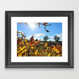 Nature in sun Framed Art Print