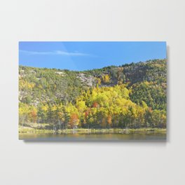 Fall On Beaver Dam Pond Acadia National Park Maine Metal Print