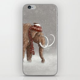 The Ice Age Sucked  iPhone Skin