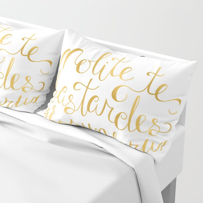 Dont Let The Bastards Grind You Down Faux Gold Foil Pillow Sham By Carolinemoore Society6