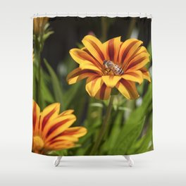 Beautiful Flower with Bee Shower Curtain