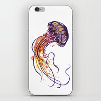 jellyfish iPhone & iPod Skins featuring Jellyfish by Sam Nagel