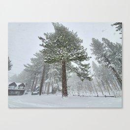 Sierra South Lake Tahoe Winter Snow Canvas Print