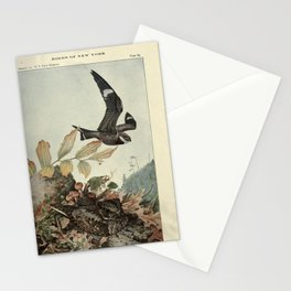 Nighthawk, Whip-poor-will15 Stationery Cards