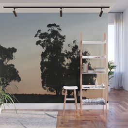 Eucalyptus trees at sunset Wall Mural