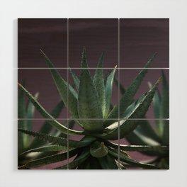 Aloe Aloe Aloe Wood Wall Art